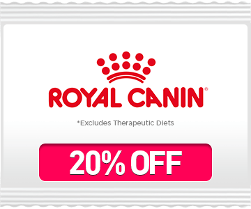 Big Bag Sale Royal Canin
