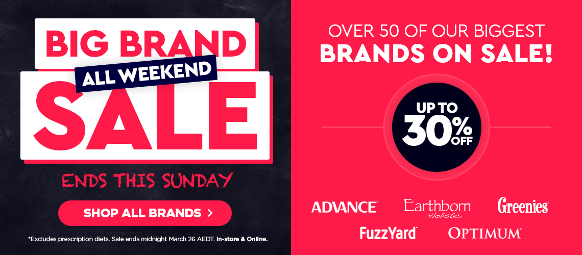 Big Brand Sale - Up to 30% OFF